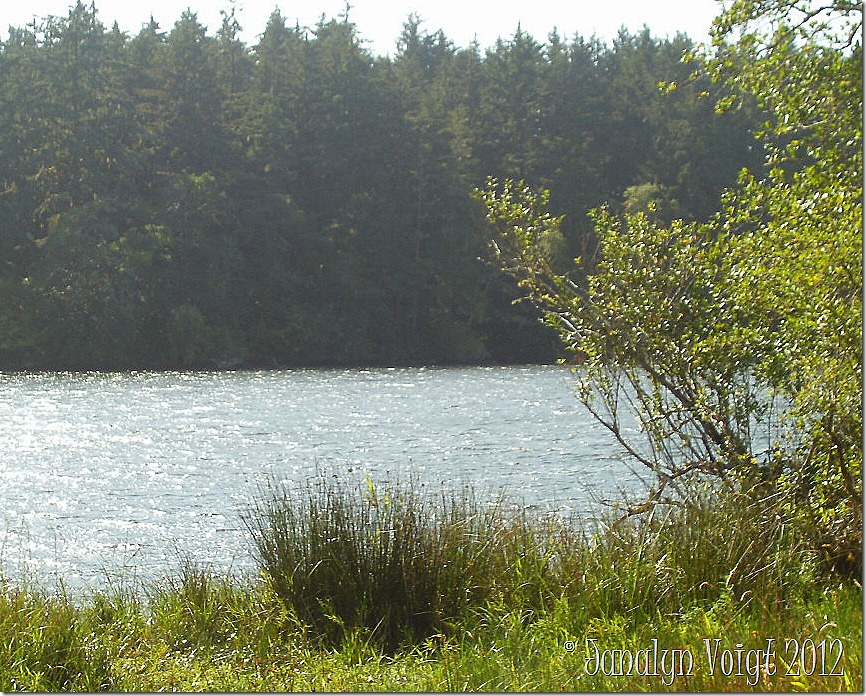 Lake at Fort Stevens State Park