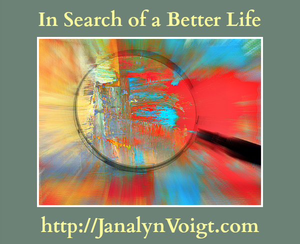 In Search of a Better Life by Janalyn Voigt
