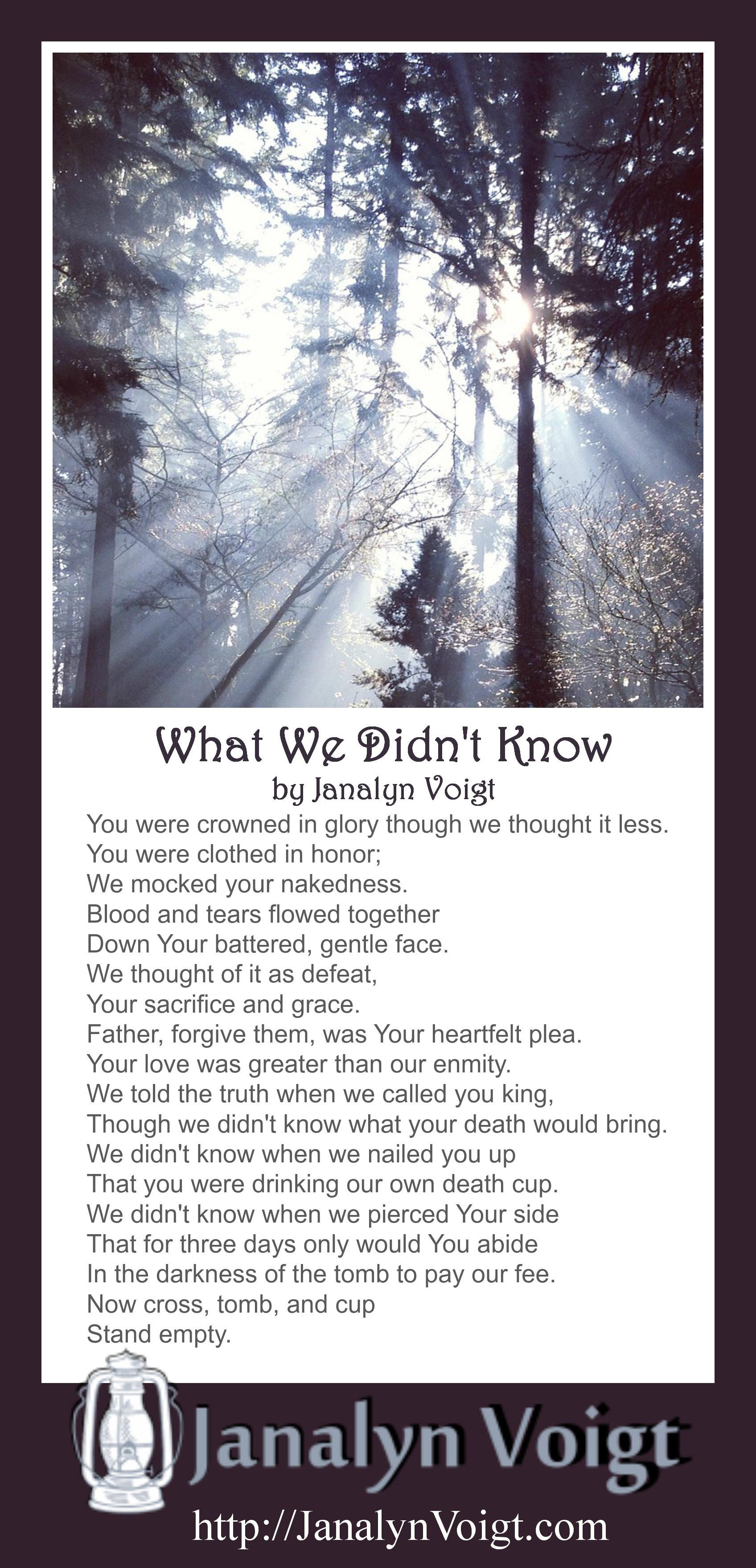 What we didn't know, poetry by Janalyn Voigt