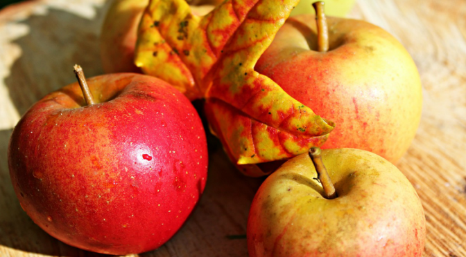 Seasonal Foods for November