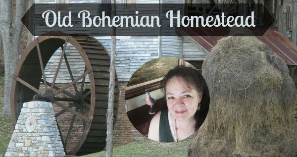 Subscribe to receive Old Bohemian Homestead articles.