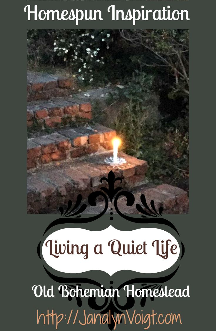 Live a Quiet Life by Janalyn Voigt | Old Bohemian Homestead