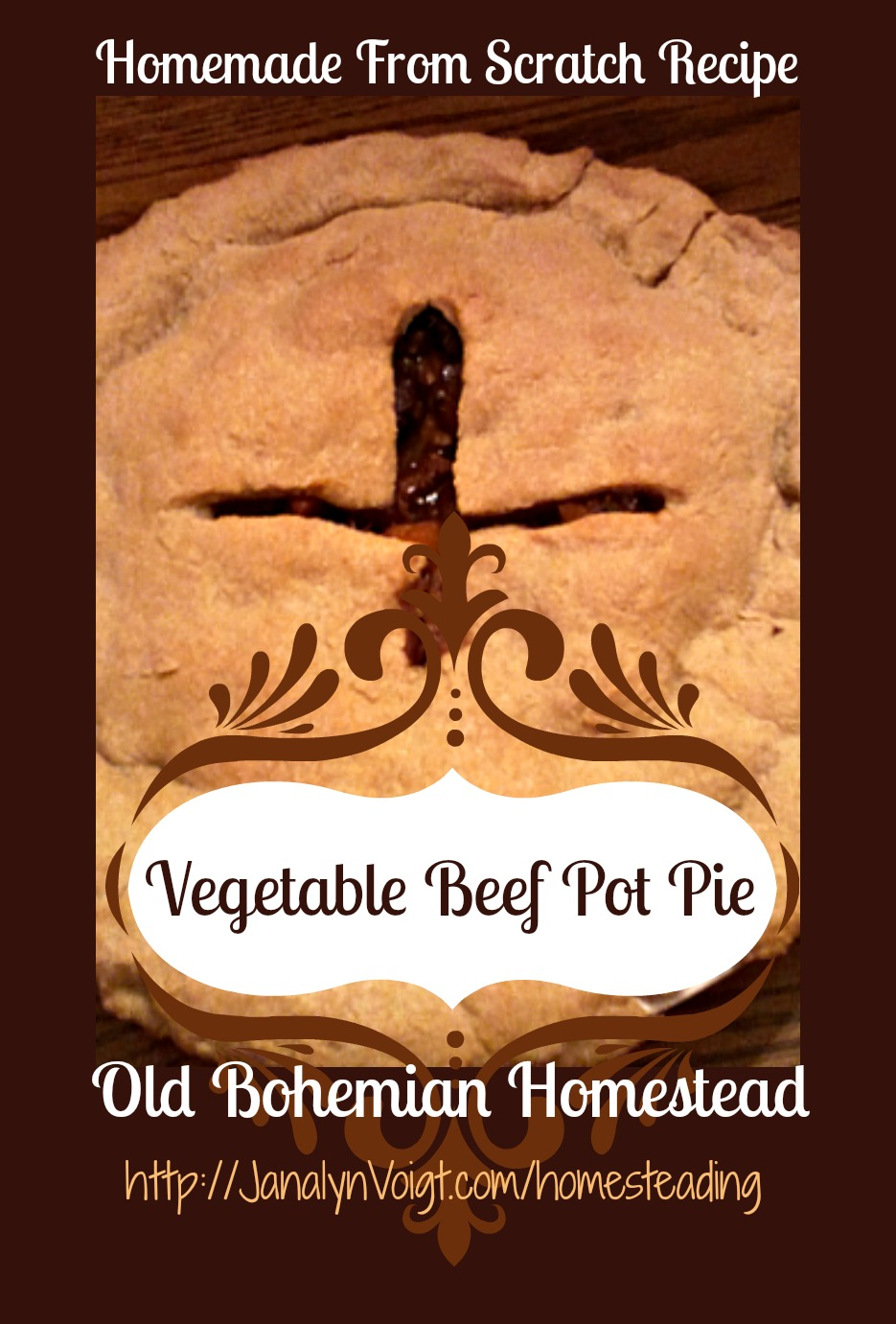 Beef Pot Pie Recipe from Janalyn Voigt   Old Bohemian Homestead