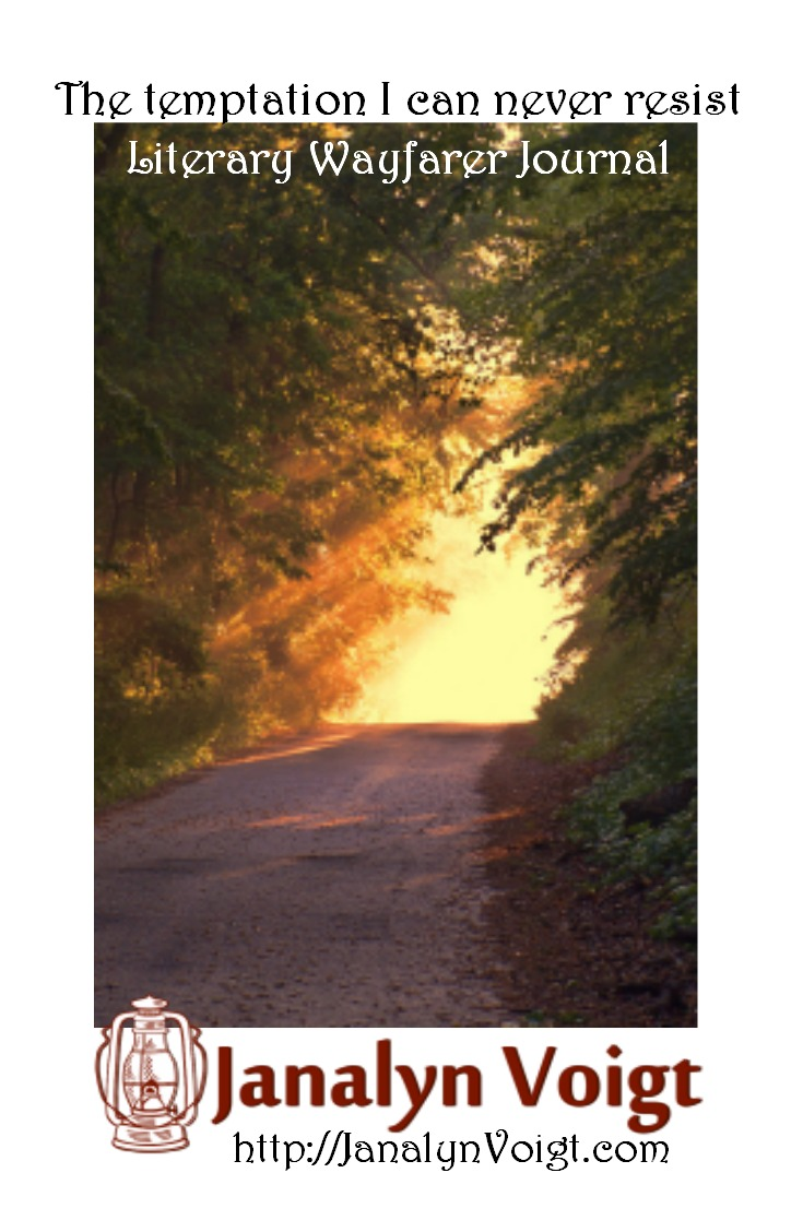 The temptation I can never resist via Janalyn Voigt | Literary Wayfarer Journal