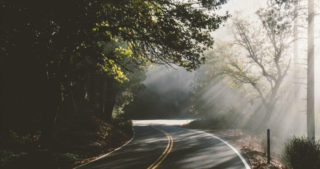 We're all on a journey by Janalyn Voigt Literary Wayfarer Journal
