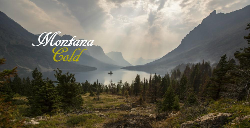 Montana Gold Banner